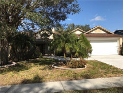 Photo of 10425 Ashley Oaks Drive, RIVERVIEW, FL 33578 (MLS # T2924781)