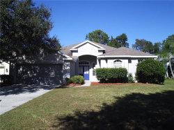 Photo of 10022 Cannon Drive, RIVERVIEW, FL 33578 (MLS # T2924851)