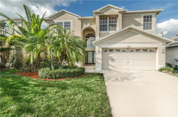 Photo of 4023 Duke Firth Street, LAND O LAKES, FL 34638 (MLS # T2935169)