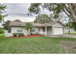 Photo of 2100 Flamingo Place, SAFETY HARBOR, FL 34695 (MLS # U7837865)