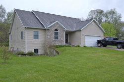 Photo of 1985 Cygnet Drive, Otsego, MI 49078 (MLS # 17042672)