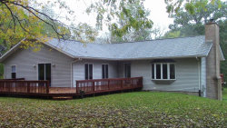 Photo of 26689 28th Avenue, Gobles, MI 49055 (MLS # 17044872)