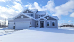 Photo of 10725 Winnie Lane, Allendale, MI 49401 (MLS # 17045415)