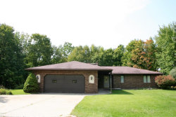 Photo of 35521 Baseline Road, Gobles, MI 49055 (MLS # 17045622)