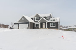 Photo of 3029 Park N Drive, Jenison, MI 49428 (MLS # 17046009)