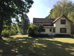 Photo of 13480 Hickory Street, Fruitport, MI 49415 (MLS # 17048436)