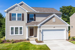 Photo of 59773 Ravenna Drive, Mattawan, MI 49071 (MLS # 17048627)