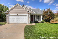 Photo of 3723 W Sugarberry Court, Kentwood, MI 49512 (MLS # 17049266)
