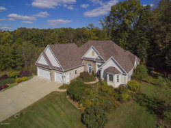 Photo of 185 Hestia Drive, Plainwell, MI 49080 (MLS # 17049275)