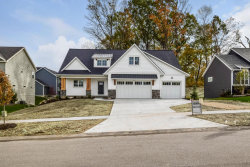 Photo of 7342 Marksbury Drive, Byron Center, MI 49315 (MLS # 17049398)