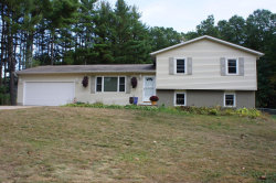 Photo of 45801 Cr 653, Paw Paw, MI 49079 (MLS # 17049787)
