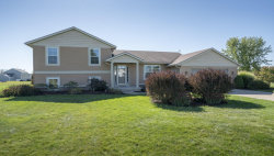 Photo of 34 Horseshoe Court, Unit 18, Caledonia, MI 49316 (MLS # 17050989)