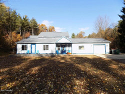 Photo of 12615 State Road, Nunica, MI 49448 (MLS # 17051254)