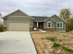 Photo of 11633 60th, Allendale, MI 49401 (MLS # 17051621)