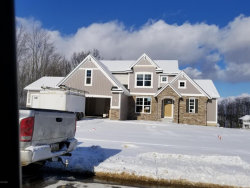 Photo of 9437 Sunset Ridge Drive, Rockford, MI 49341 (MLS # 17055247)