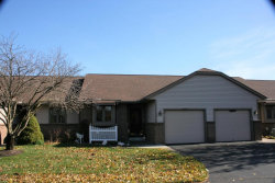 Photo of 1734 Lakeview Drive, Unit 2, Zeeland, MI 49464 (MLS # 17055652)