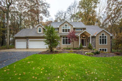 Photo of 7699 N Arroyo Vista Drive, Rockford, MI 49341 (MLS # 17056329)