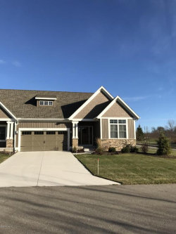 Photo of 1687 North Brandon Ridge Court, Unit 14, Walker, MI 49544 (MLS # 17057157)