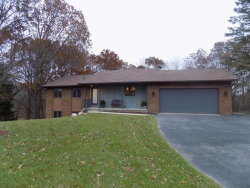 Photo of 6712 Juneview Drive, Rockford, MI 49341 (MLS # 17057801)