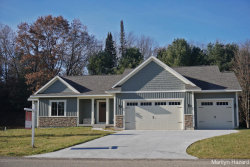 Photo of 13241 Forest River Drive, Lowell, MI 49331 (MLS # 17057971)