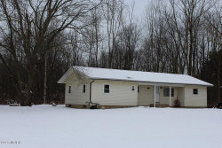 Photo of 1133 140th Avenue, Wayland, MI 49348 (MLS # 17058701)