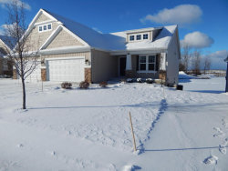 Photo of 11539 Wilmington Drive, Allendale, MI 49401 (MLS # 17058941)