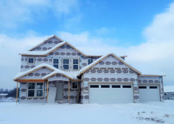 Photo of 10867 Marsh, Allendale, MI 49401 (MLS # 17059421)