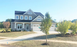 Photo of 3019 Brixton Drive, Unit Lot 235, Jenison, MI 49428 (MLS # 18000413)