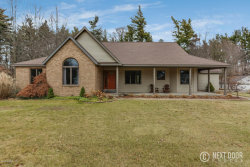 Photo of 12196 White Pine Dr, Allendale, MI 49401 (MLS # 18000444)
