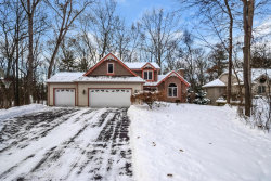 Photo of 6739 Blythefield Avenue, Rockford, MI 49341 (MLS # 18000787)