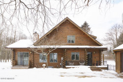 Photo of 853 112th, Martin, MI 49070 (MLS # 18004538)