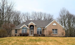 Photo of 7238 Tyler Pines Avenue, Hudsonville, MI 49426 (MLS # 18008457)