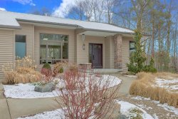 Photo of 3439 Clearbrook Court, Saugatuck, MI 49453 (MLS # 18008552)