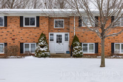 Photo of 5261 Southbrook Court, Unit 53, Hudsonville, MI 49426 (MLS # 18008776)