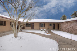 Photo of 6638 S Wentward Court, Unit 12, Hudsonville, MI 49426 (MLS # 18009627)