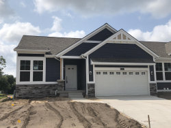 Photo of 13452 Waybury Drive, Unit 30, Nunica, MI 49448 (MLS # 18017170)
