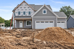 Photo of 9066 Cedar Lake Drive, Jenison, MI 49428 (MLS # 18017611)