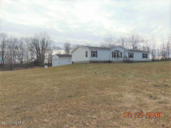 Photo of 2896 136th Avenue, Hopkins, MI 49328 (MLS # 18018601)