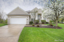 Photo of 6638 Laguna Vista Drive, Rockford, MI 49341 (MLS # 18019770)