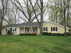 Photo of 619 S Fall River, Coldwater, MI 49036 (MLS # 18020220)