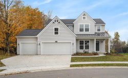 Photo of 2930 Baywood Drive, Unit Lot 228, Jenison, MI 49428 (MLS # 18021450)