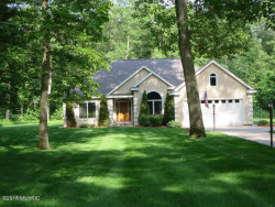 Photo of 3115 Red Oak Drive, Saugatuck, MI 49453 (MLS # 18028086)
