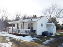 Photo of 16217 130th Avenue, Nunica, MI 49448 (MLS # 18030812)