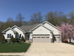 Photo of 8121 Cool Ridge Drive, Byron Center, MI 49315 (MLS # 18031402)