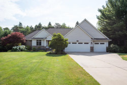 Photo of 263 Goldeneye Court, Holland, MI 49424 (MLS # 18033426)