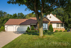 Photo of 7841 Park Ridge Drive, Jenison, MI 49428 (MLS # 18033561)