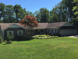 Photo of 10180 Rivershore Drive, Caledonia, MI 49316 (MLS # 18033752)