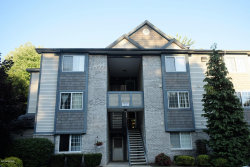 Photo of 18372 N Ridge Court, Unit 4, Spring Lake, MI 49456 (MLS # 18034113)