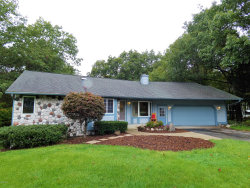 Photo of 18713 Sioux Drive, Spring Lake, MI 49456 (MLS # 18048303)