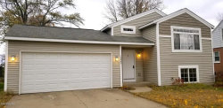 Photo of 10443 Chicago Drive, Zeeland, MI 49464 (MLS # 18054324)
